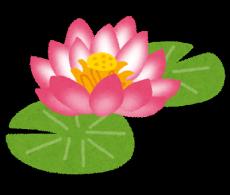 flower_hasu1-230x1951