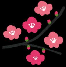 flower_ume1-230x2321